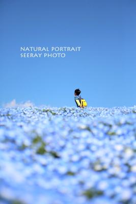 しいれいphoto(出張撮影@横浜)