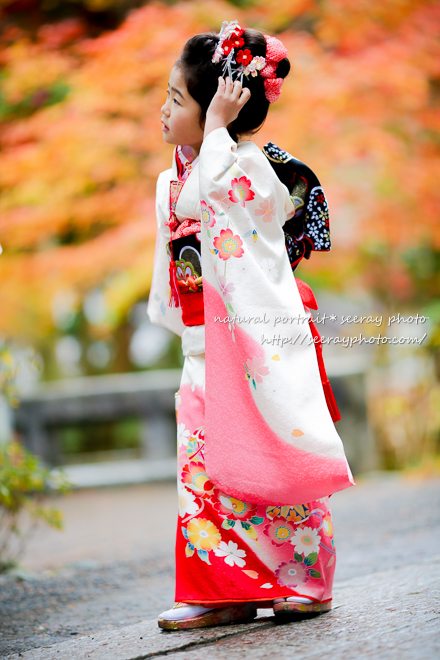 七五三 鎌倉鶴岡八幡宮の紅葉