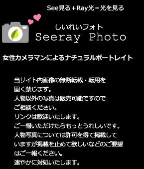 横浜の女性写真家による出張撮影|東京・川崎・神奈川 しいれいフォト
